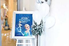 Šašavkov_Frozen-02