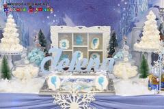 Šašavkov_Frozen-13